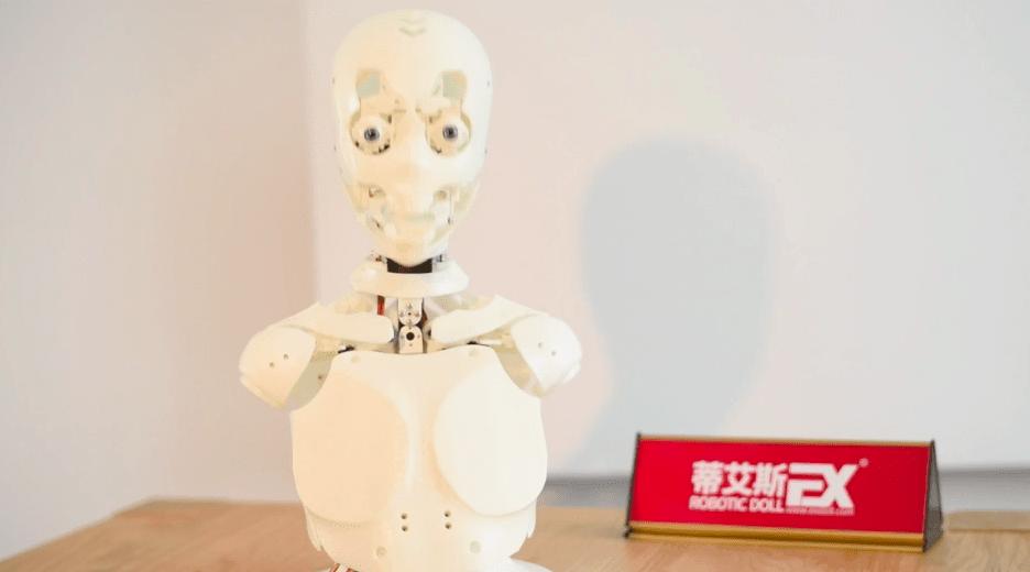DS Doll Robotic Skeleton